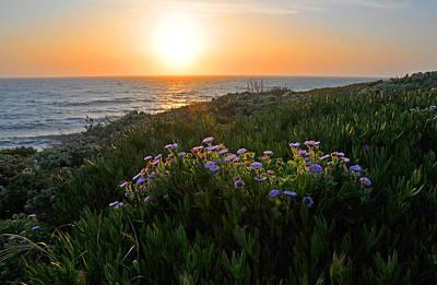 Coastal Sunset Art Print by Lynn Bauer