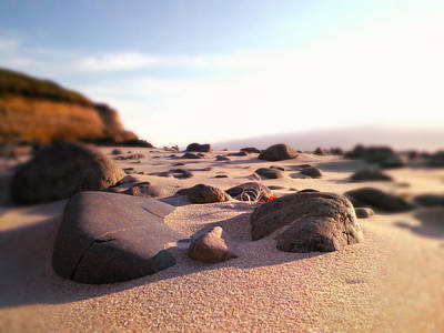 Photograph - Coastal Terrain by Micki Findlay