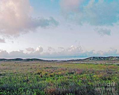 Photograph - Coastal Texas Prairie by Lizi Beard-Ward
