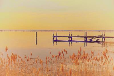 Red Roses - Coastal Winter by Karol Livote