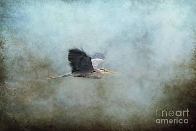 River Scenes Photograph - Coasting 1 by Jai Johnson