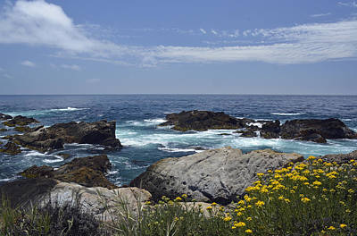 Point Lobos Reserve Photograph - Coastline And Flowers In California's Point Lobos State Natural Reserve by Bruce Gourley