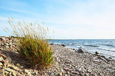 Photograph - Coastline by Kennerth and Birgitta Kullman