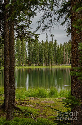 Photograph - Cobbett Lake At Grand Mesa by Kelly Black