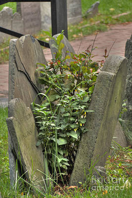 Cemetery Photograph - Cobbs Hill Burial Ground 4 by Deborah Smolinske