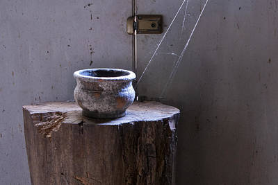 Photograph - Cobwebs by Carol Erikson