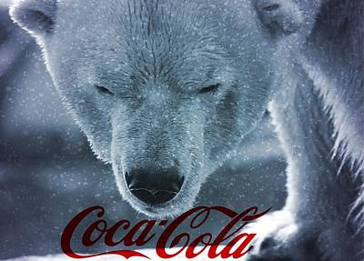Photograph - Coca Cola Polar Bear by Dan Sproul