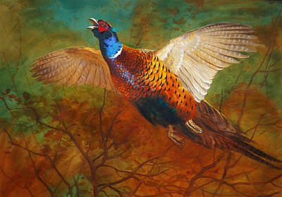 Old Painting - Cock Pheasant by Celestial Images