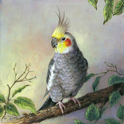 Cockatiel Art Print by Nicole Troup