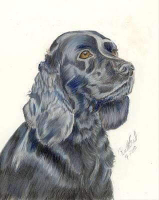 Cocker Spaniel Art Print by Ruth Seal