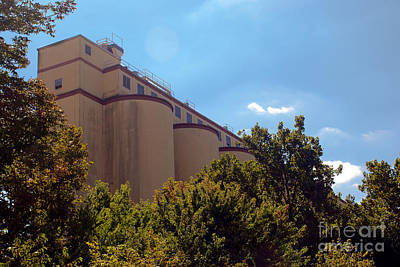 Photograph - Cocoa Bean Storage Elevators by Mark Dodd