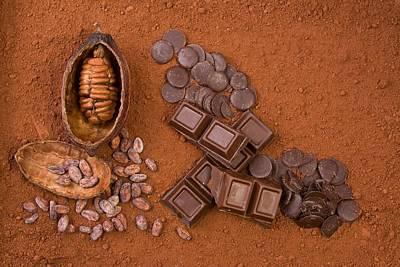 Cocoa Original