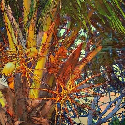Painting - Coconut Palm Close Up - Square by Lyn Voytershark