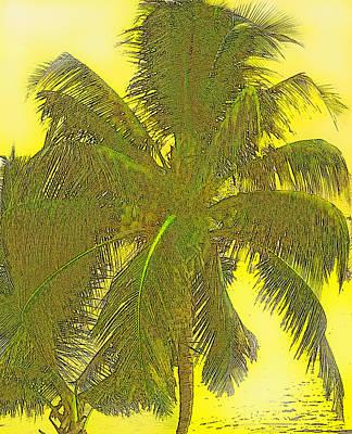 Digital Art - Coconut Palm by Ian  MacDonald
