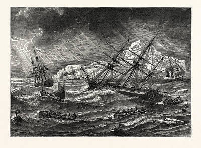 Newfoundland Drawing - Cod-fishing On The Great Bank Of Newfoundland by English School