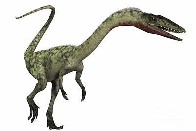 Coelophysis Digital Art - Coelophysis Dinosaur by Corey Ford
