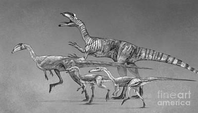 Coelophysoid Diversity From The Late Art Print by Roman Garcia Mora