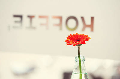 Photograph - Coffee And Gerbera. Utrecht by Jenny Rainbow