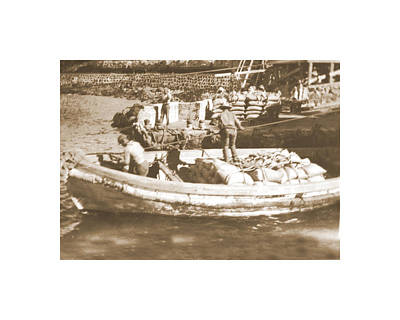 Photograph - Coffee Boat by Mary Lovein