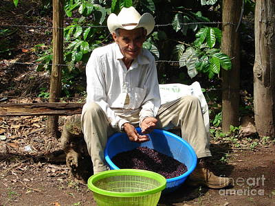 Photograph - Coffee Farmer by Lew Davis