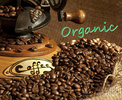 Photograph - Coffee Grinder With Organic Beans by Gunter Nezhoda