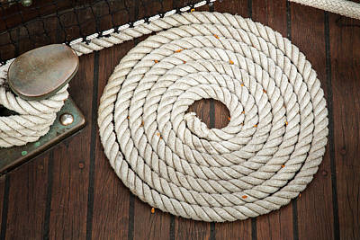 Coiled Art Print by Dale Kincaid