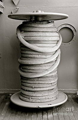 Photograph - Coiled  by Suzanne Oesterling