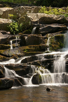Photograph - Coker Creek Cascades by Carol Erikson