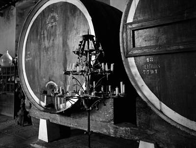 Photograph - Colares Winery by Luis Esteves