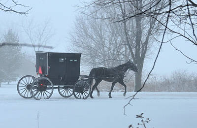 Cold Amish Morning Art Print