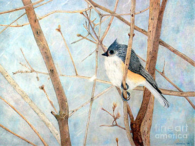Tufted Titmouse Drawing - Cold And Lonely by Patty Poole