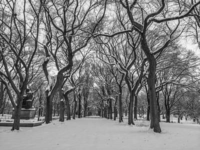 Snow Photograph - Cold And Quiet by Raffi  Bashlian