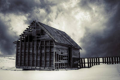 Plains Photograph - Cold - Bw by Thomas Zimmerman