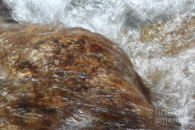 Cold Clear Water Art Print by Lynn Sprowl