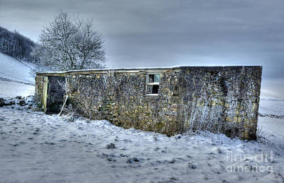 Photograph - Cold Comfort  by David Birchall