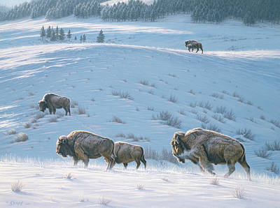 Buffalo Painting - Cold Day At Lamar by Paul Krapf