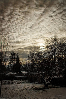 Photograph - Cold December Dusk by Mick Anderson