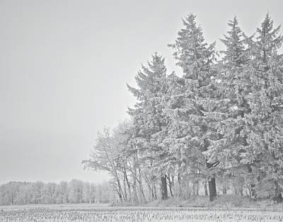 Cold Lace Print by Odd Jeppesen