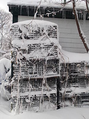 Art Print featuring the photograph Cold Lobster Trap by Robert Nickologianis