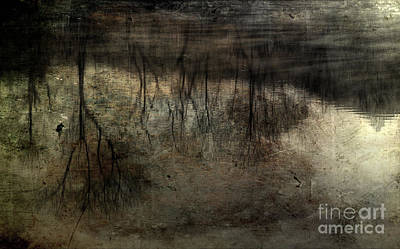 River Scenes Photograph - Cold Reflection 2 by Michael Eingle