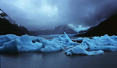 Photograph - Cold by Robert Woodward