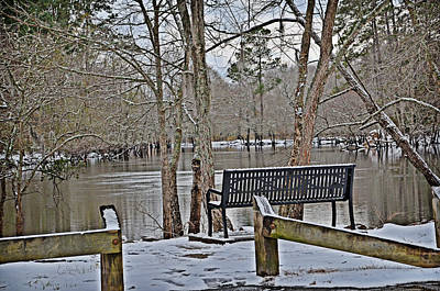 Photograph - Cold Seat By The River by Linda Brown