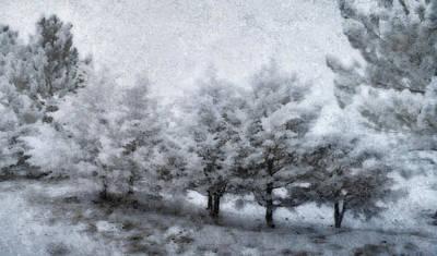 Photograph - Cold Spell by Ellen Heaverlo