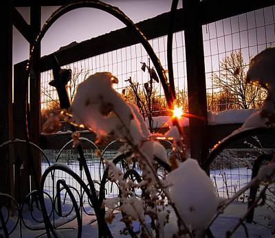 Photograph - Cold Sunset by Haren Images- Kriss Haren