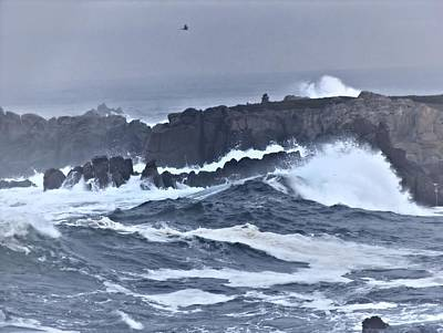 Photograph - Cold Surf by Elery Oxford