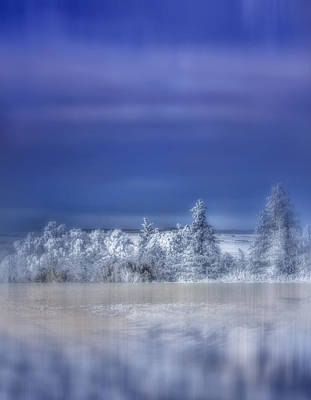 Photograph - Cold Winter Day by Ellen Heaverlo