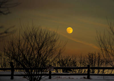 Photograph - Cold Winter Moon Rise by Edward Peterson