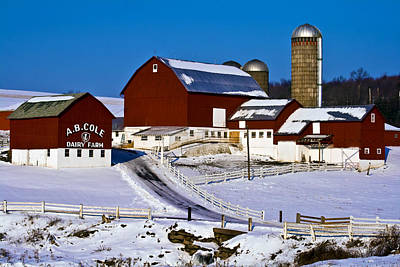 Cole Dairy Farm Art Print by David Simons