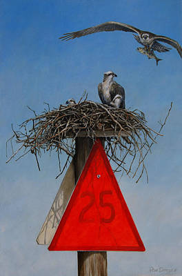 Osprey Painting - Collaborative Effort by Dreyer Wildlife Print Collections