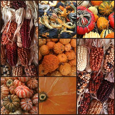 Collage - Corn - Pumpkins - Gourds - Elena Yakubovich Art Print by Elena Yakubovich